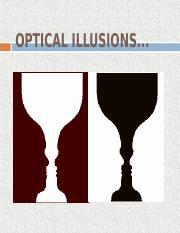 Optical Illusions.ppt