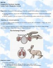Comparative Vertebrate Anatomy - Respiration