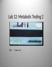 221 Labplan 12 Metab 2 with Unknowns