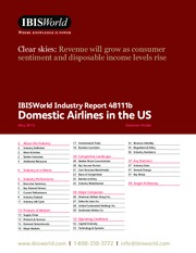 Domestic Airlines in the US Industry Report