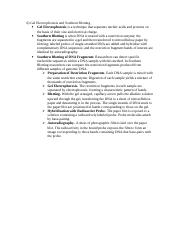 Biology Chapter 20 Essays 5