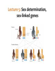 Lecture5_Sexlinked_BlackBoard.pdf