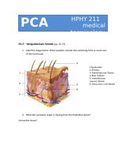 PCA 3 (Integumentary System).docx