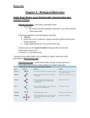 Chapter 3 - Biological Moleules NOTES.docx