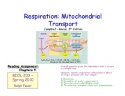 Lecture _9 - Respiration - Mitochondrial Transport