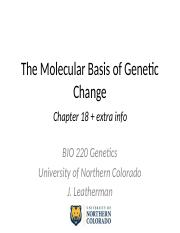 The Molecular Basis of Genetic Change.pptx
