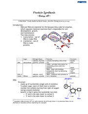 Chapter 17 - Protein Synthesis Notes