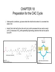 18 Preparation for the CAC Cycle-a.pdf