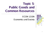 Topic 5. Public Goods and Common Resources