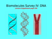 29_Biomolecules_Survey_IV
