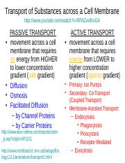 2.5 Cell Transport.ppt