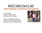 lipid metabolism lecture 1 pt 2