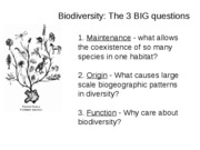 Lecture+22+-+Biodiversity+posted