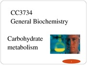 metabolism_carbohydrate_2