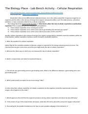 The_Biology_Place-Cellular_Respiration_Worksheet__2_.docx