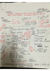 three main theories of economics notes