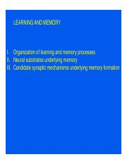 Learning and Memory Slides 2011.pdf