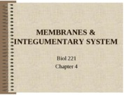 MEMBRANES&SKIN (LECTURE NOTES)