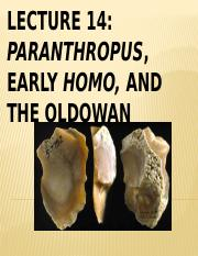 Lecture 14 Paranthropus, Early Homo and the Oldowan Spring 2016.pptx