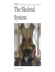 Chapter 3 Skeletal System.pdf