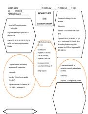 CV Concept Care map_12.docfinal (1).doc
