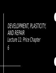DPR Lecture 11.pptx