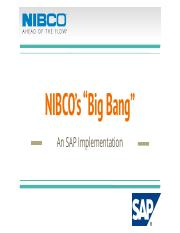 295713685-Nibco-s-big-Bang-Sap-Implemetation.pptx