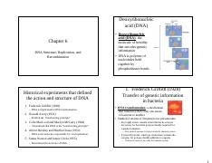 Chapter 6 (DNA Structure.pdf
