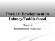 Chapter 4- Physical Dev in Infancy-Toddlerhood