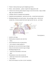 control of respiratory function notes