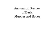 1 - Anatomical Review