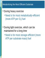 Exercise Metabolism and Hormones_1 moodle (test 2).ppt