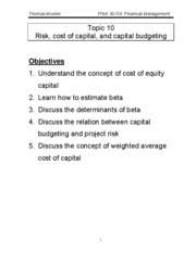 Topic10_capbud_risk[1]
