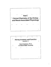 Kidney Slides Lecture 1 Anatomy and Function  PDF CHM 651 For Taking Notes Fall 2011 Final