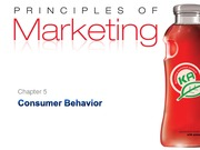 341 F09 C5 Consumer Behavior