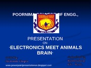 electronics_with_animals