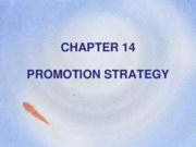 Chapter 14 - Promotion Strategy