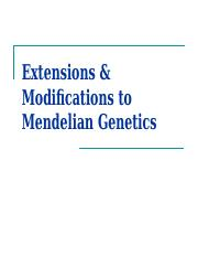 4_Extensions & Modifications