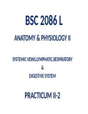 REVIEW PRACTICUM II-2  2086