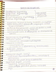 Theoretical Perspectives Notes