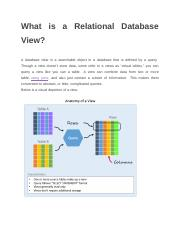 What is a Relational Database View.docx