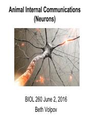 Lecture 8_Animal Communication (Neurons)_pre-slides_part 1 June 2016_v2