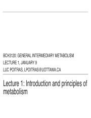 Lecture 1 Introduction and principles of metabolism