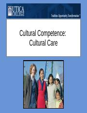 Cultural Competence.ppt