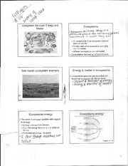 BIO 110 notes part 9, ecosystems