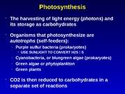 09-9 Photosynthesis with new slides