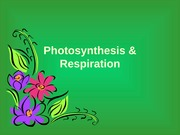 Comparing Photosynthesis and Cellular Respitation
