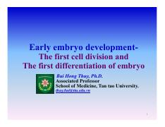 Chapter 7. The first cell division and the first differentiation of embryo