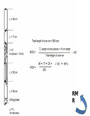 Procedure for measurement and calculation of RQD