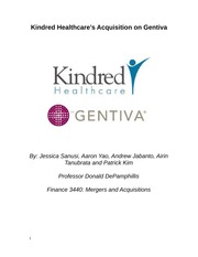 Kindred Executive Summary-Business Vission